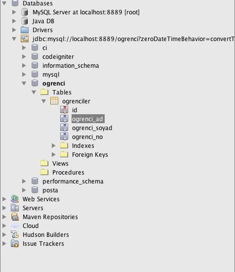 netbeans database listeleniyor