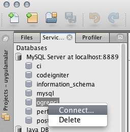 netbeans mysql database connect